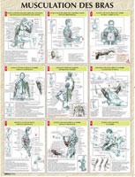 Librairie - Musique Vigot Poster Musculation des Bras