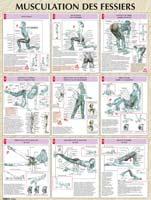 Librairie - Musique Vigot Poster Musculation des Fessiers