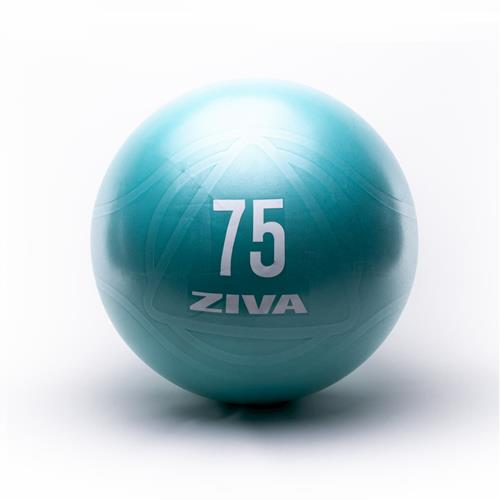 Médecine Ball - Gym Ball Core Fit Ball Ziva - Fitnessboutique